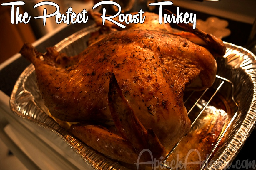 The Perfect Roast Turkey for Thanksgiving