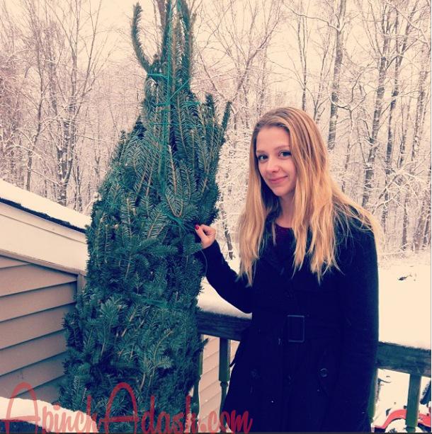 Christmas Tree apinchadash.com