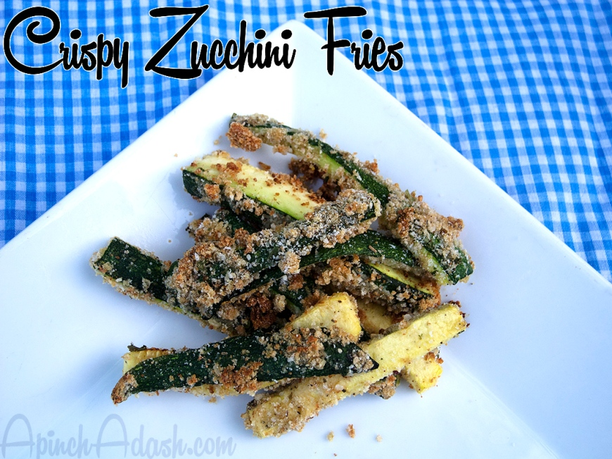 crispy zucchini fries apinchadash.com