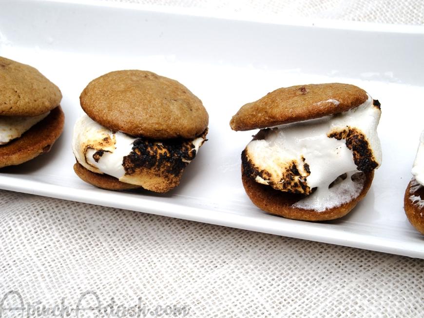 Chocolate Chunk Cookie Smores apinchadash.com