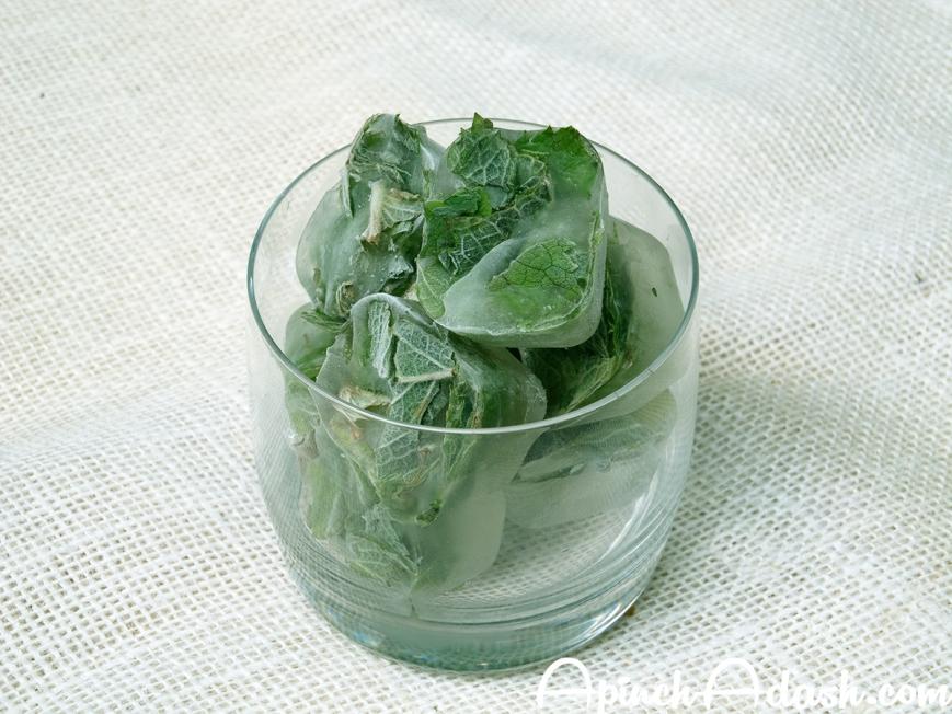 Preserving Herbs: Freezing apinchadash.com