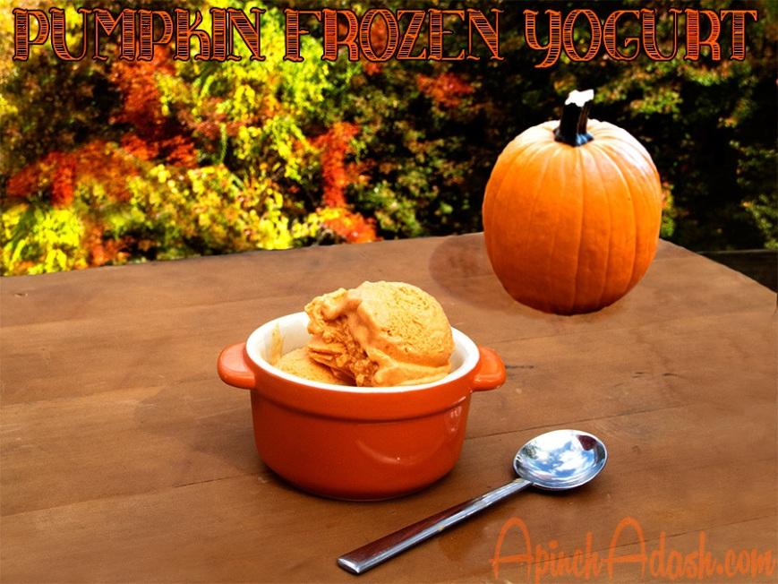Pumpkin Frozen Yogurt apinchadash.com